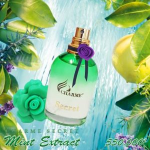 CHARME MINT SECRET EXTRACT 30ML